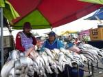 Viskraam op de markt van Saquisili